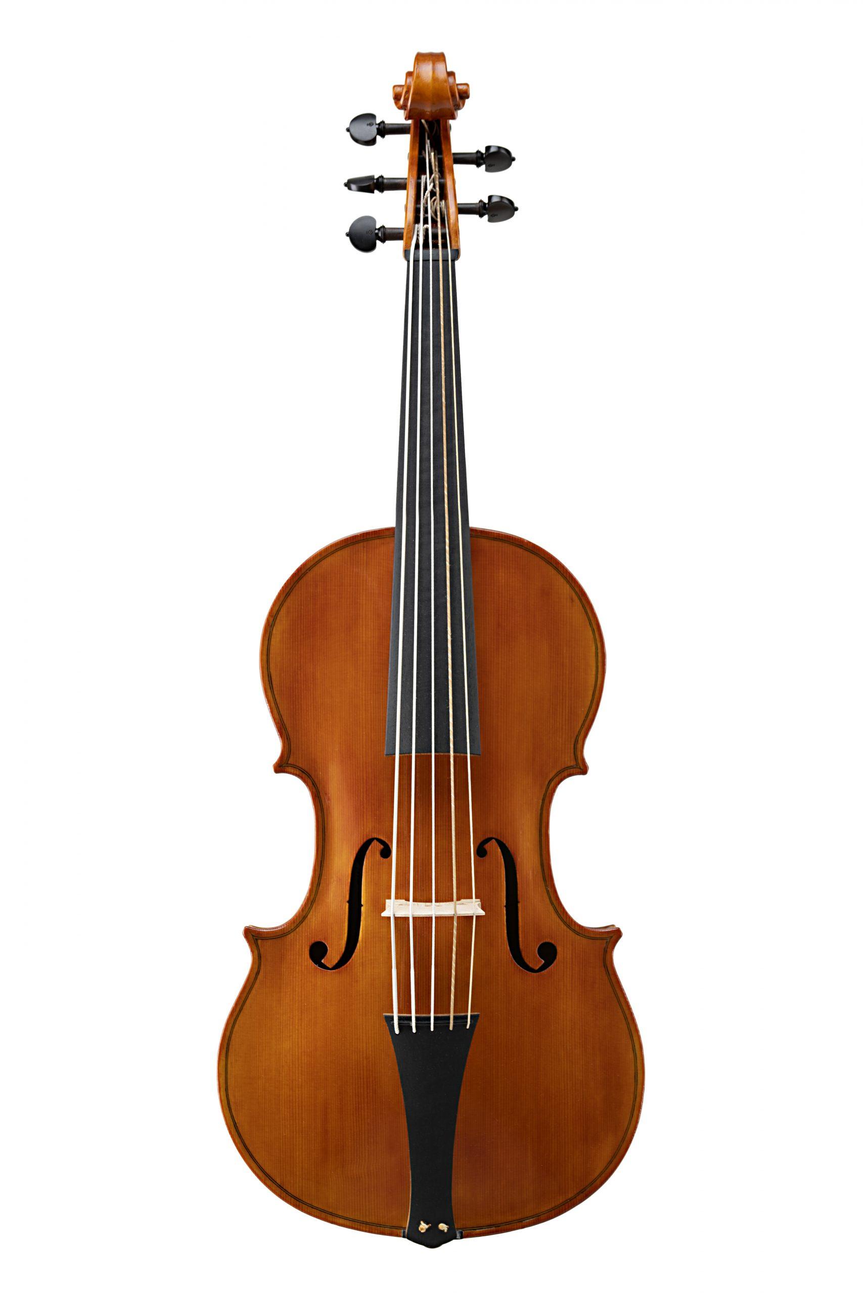 Violoncello da spalla modello Badiarov visintini alessandro