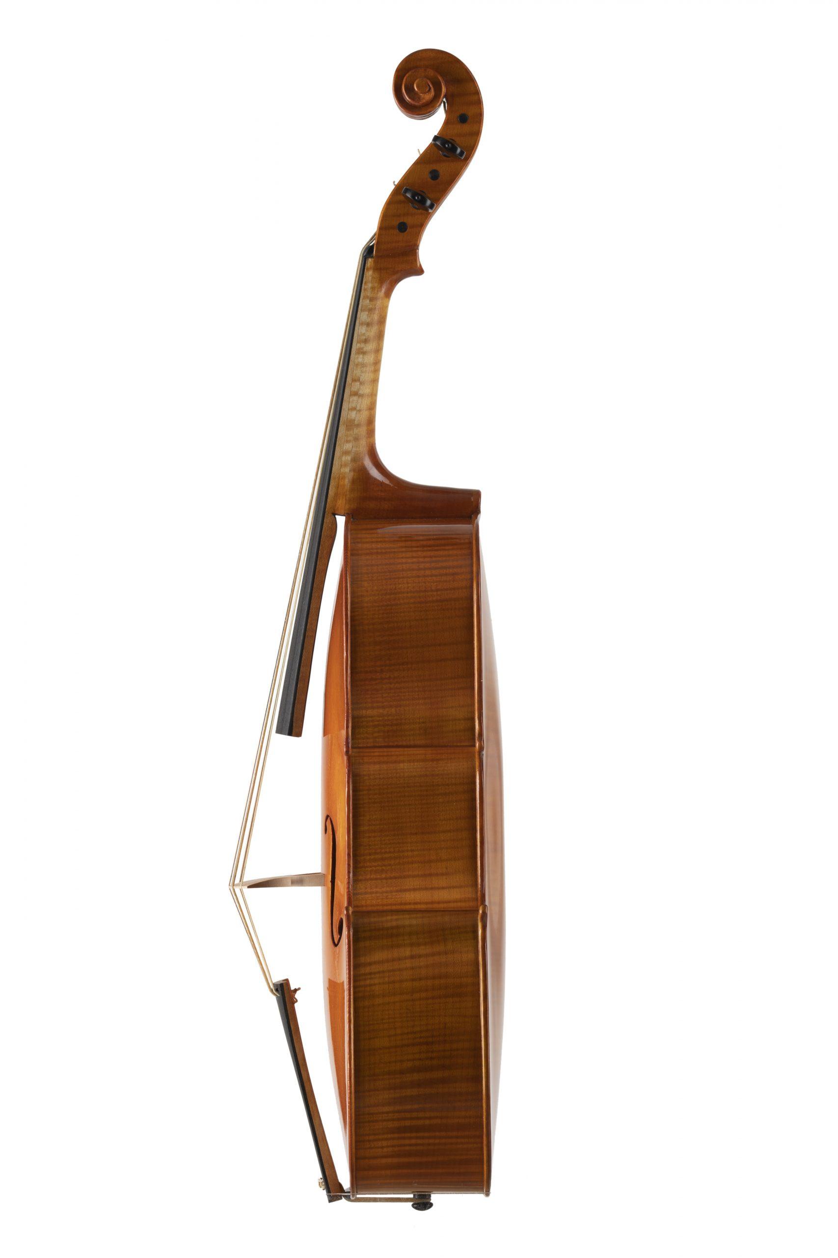 Violoncello piccolo modello Badiarov visintini Gaidano meltina