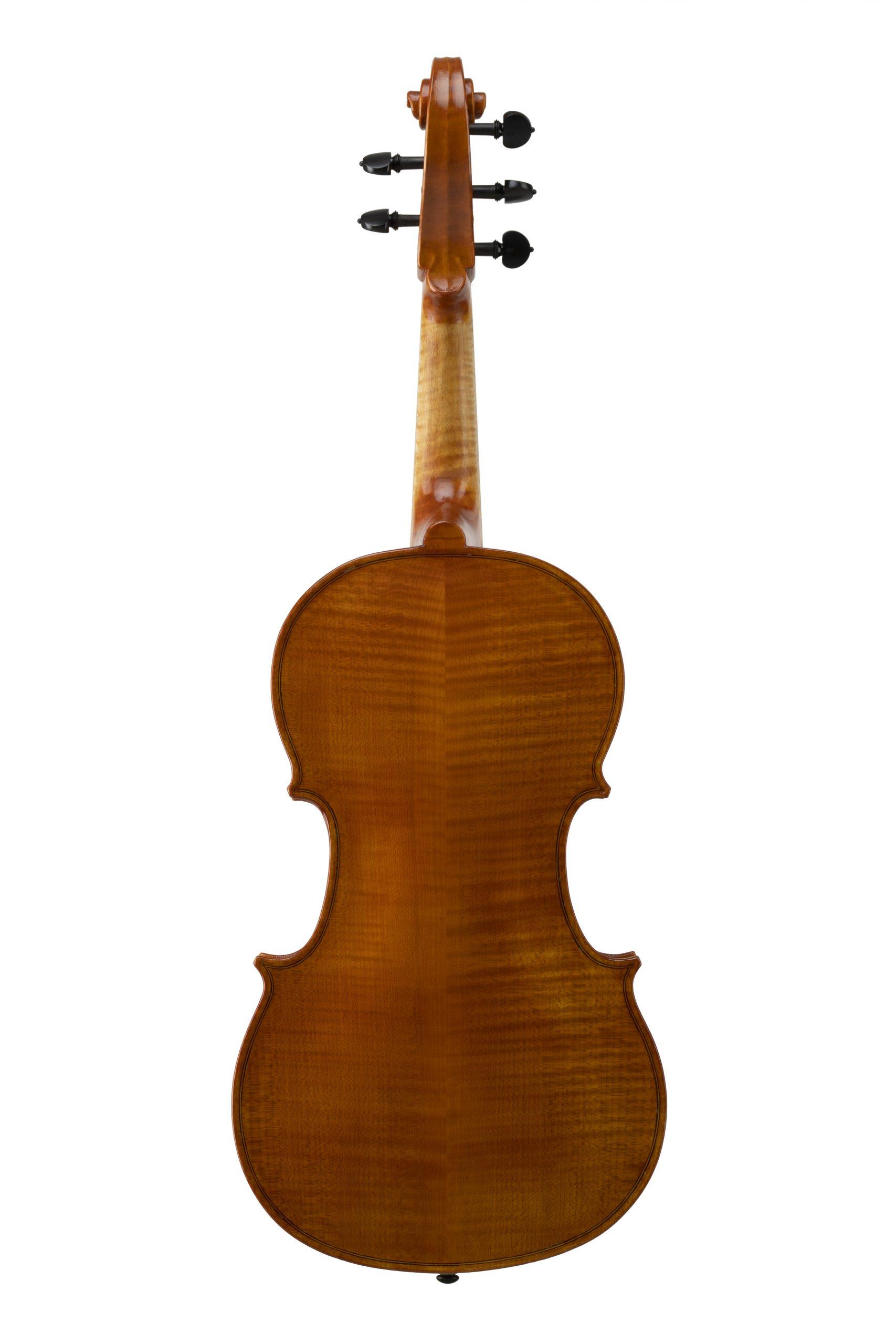 Violoncello piccolo modello Badiarov visintini gaidano