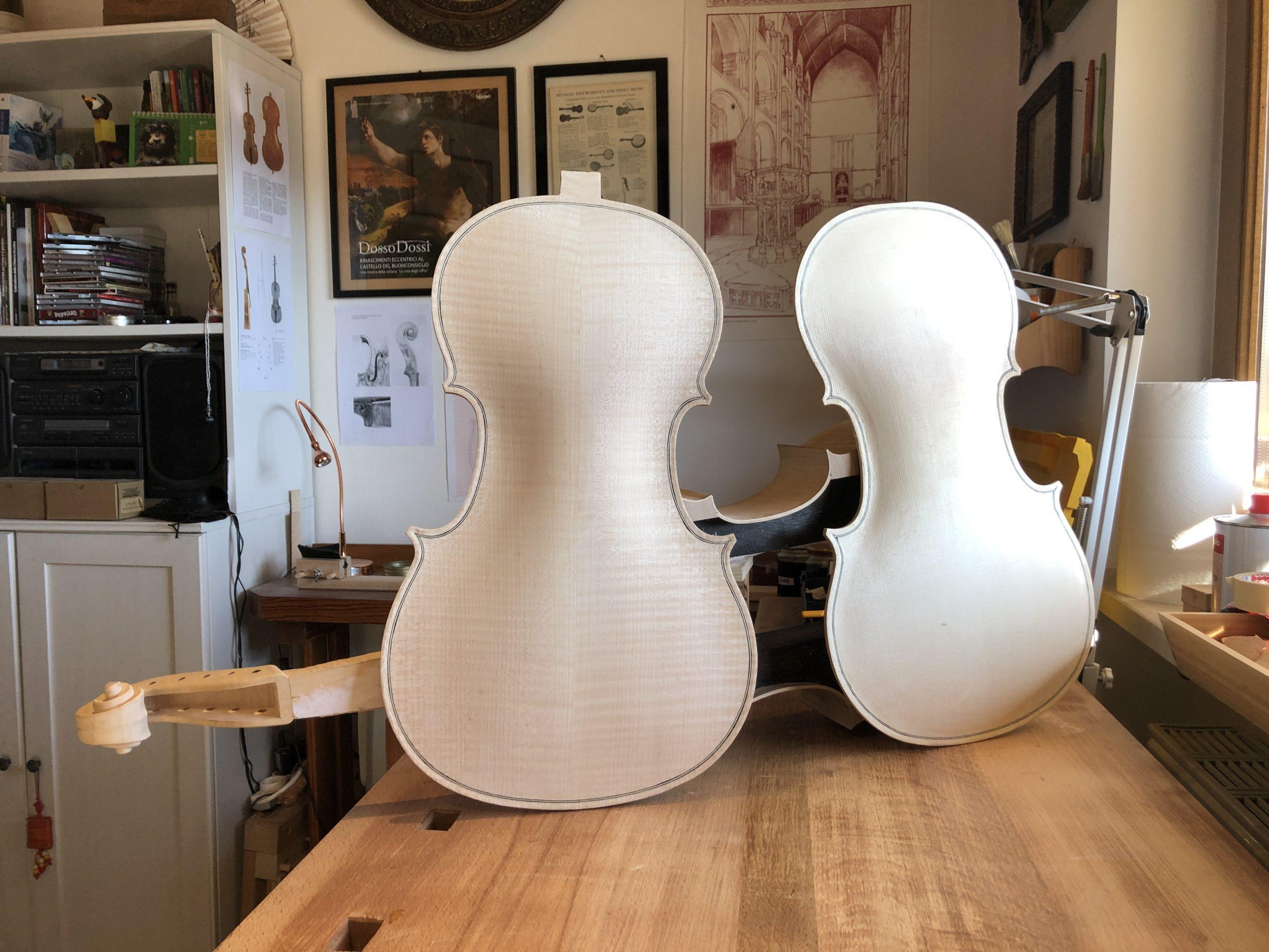 Tavola e fondo violoncello da spalla visintini gaidano
