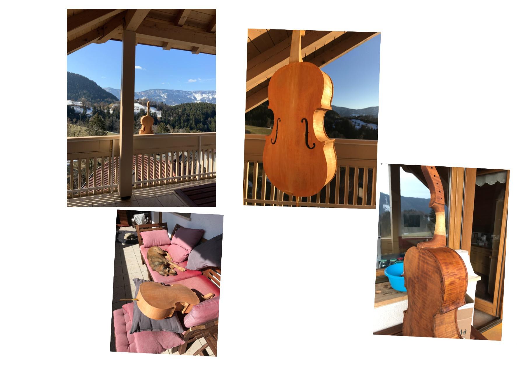 violoncello da spalla Wagner copia gaidano