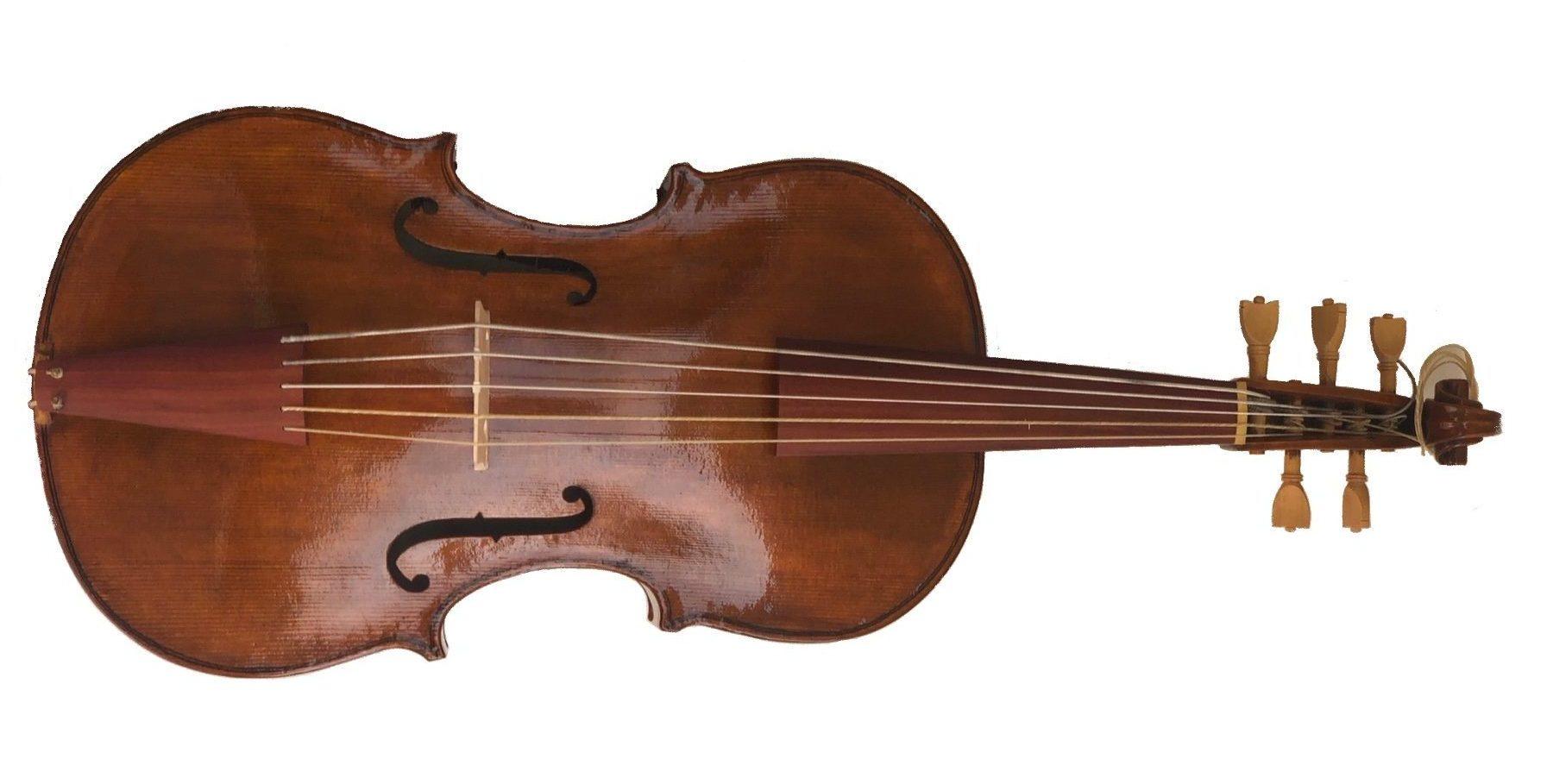 Copia violoncello piccolo Johann Wagner costruita da daniela gaidano