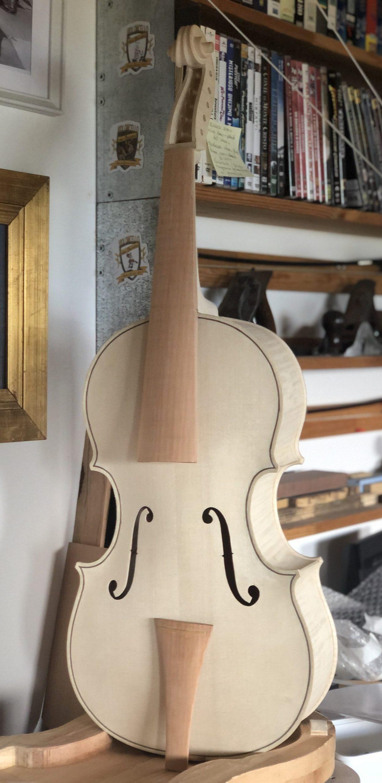 Violoncello da spalla Badiarov custom visintini gaidano