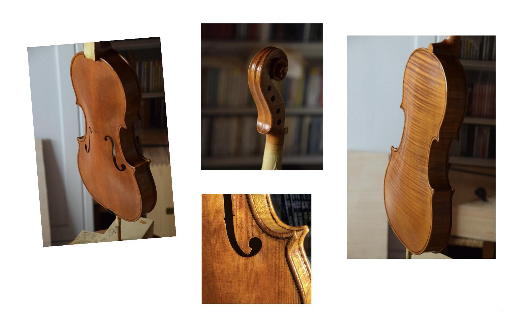 violino modello stradivari Alessandro Visintini
