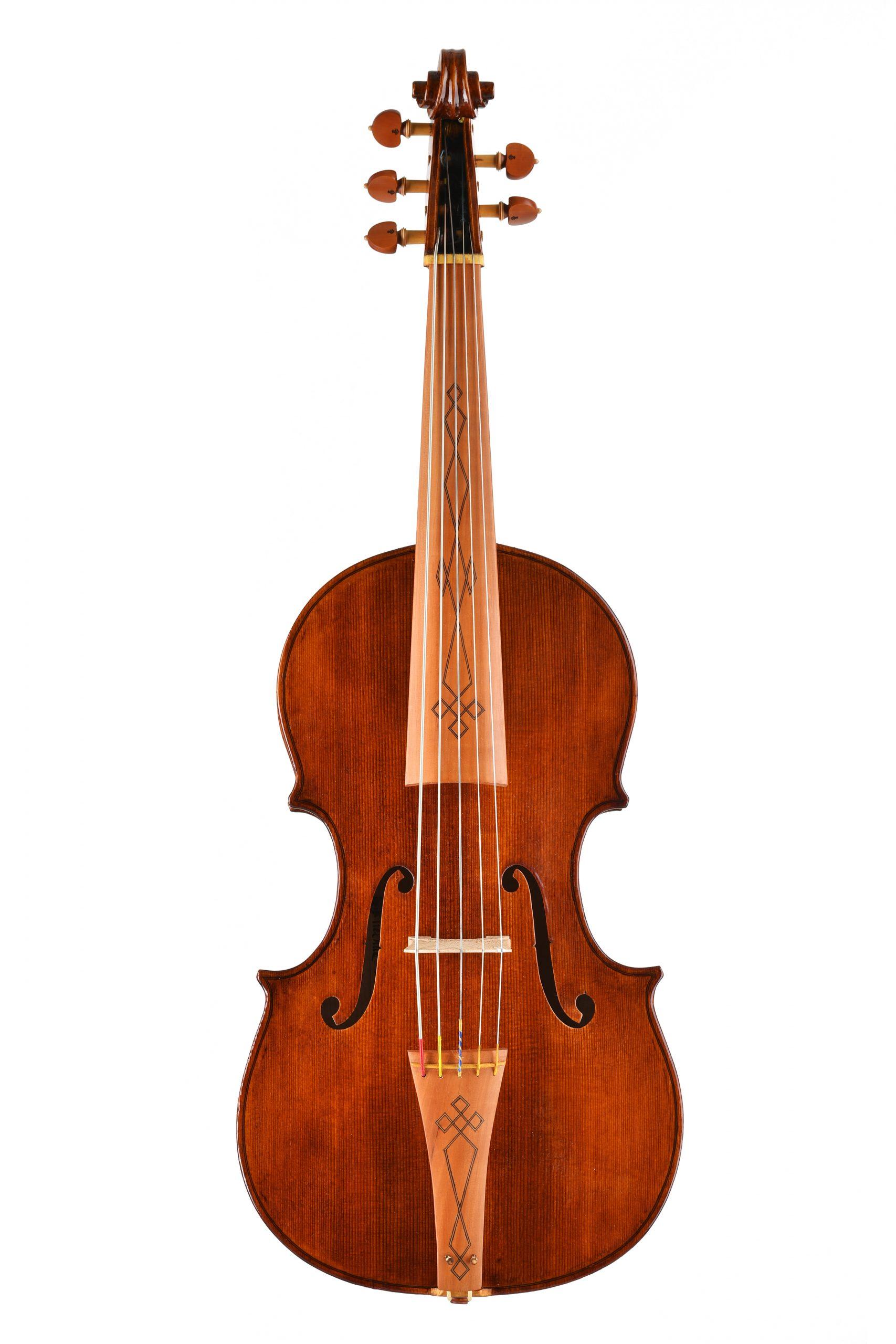 Violoncello da spalla Visintini Gaidano Custom