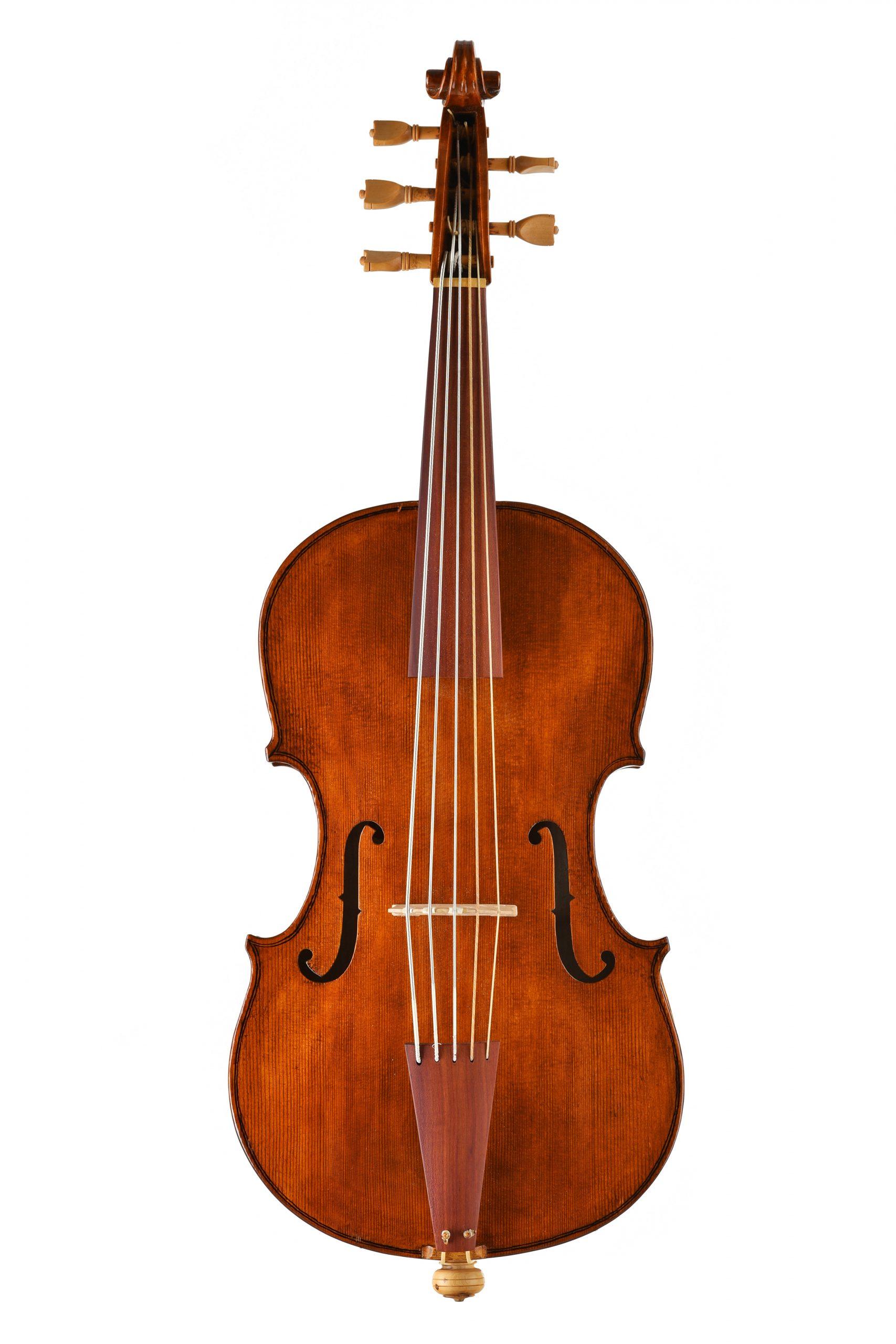 Violoncello da spalla Johann Wagner Borstendorf Daniela Gaidano
