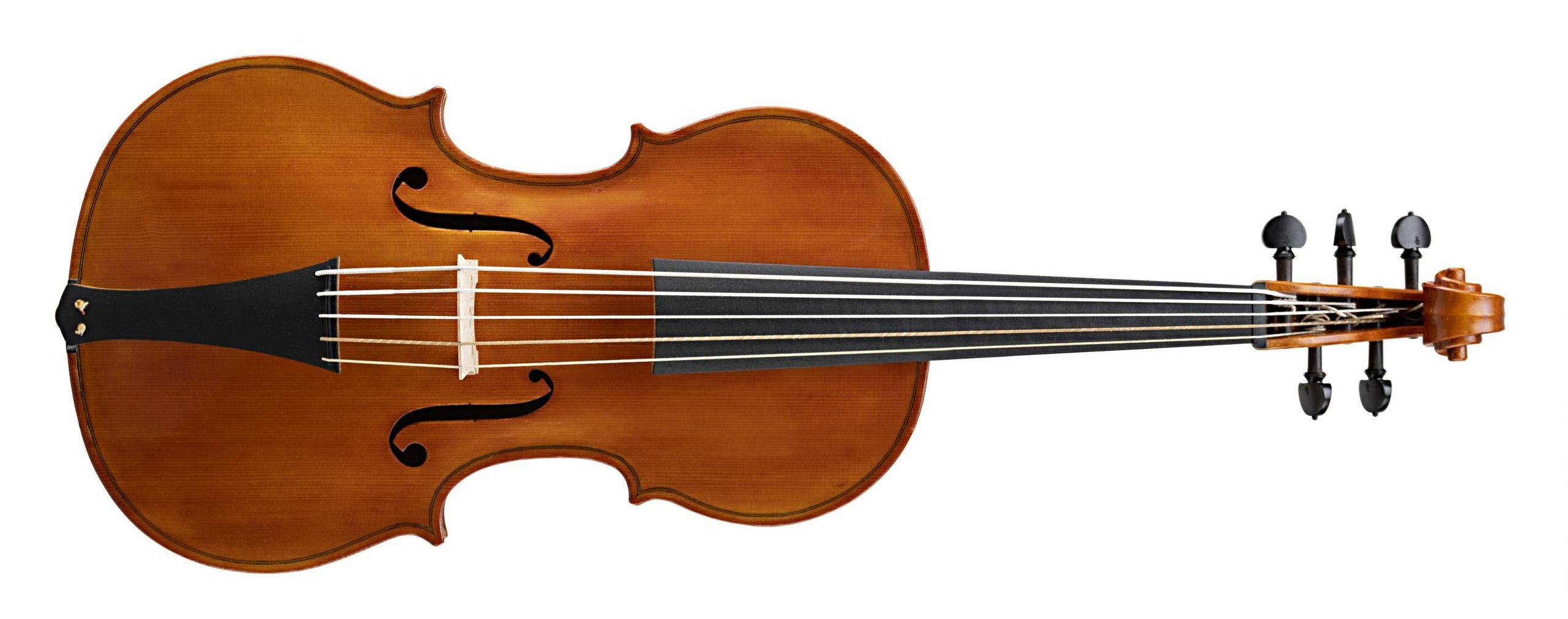 Violoncello da spalla Badiarov Visintini gaidano