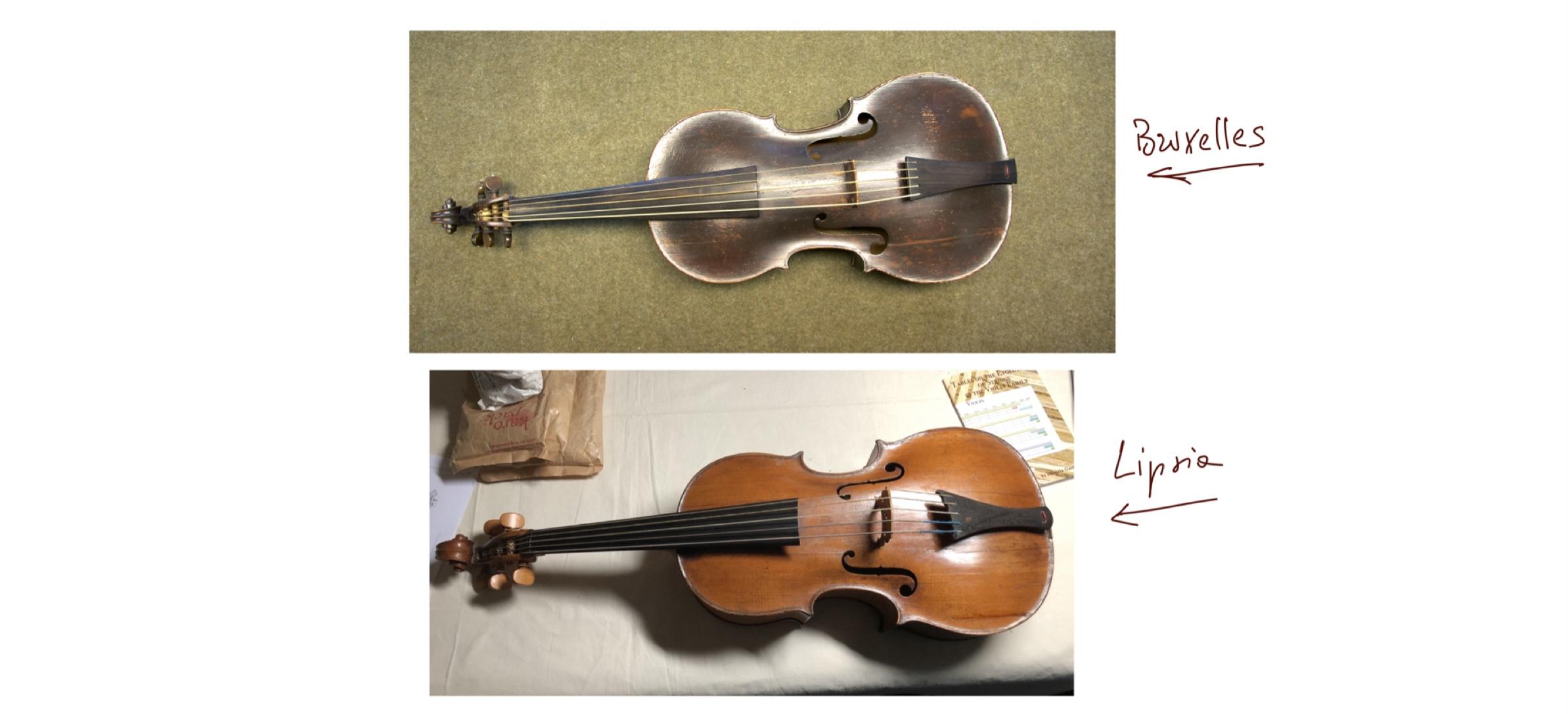 Confronto violoncello piccolo j. Ch. Hoffmann Lipsia e bruxelles